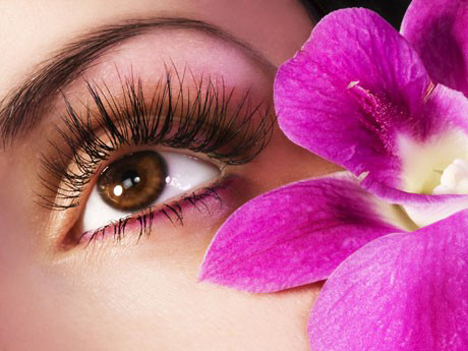 Best Beauty Eyelash Perm 2